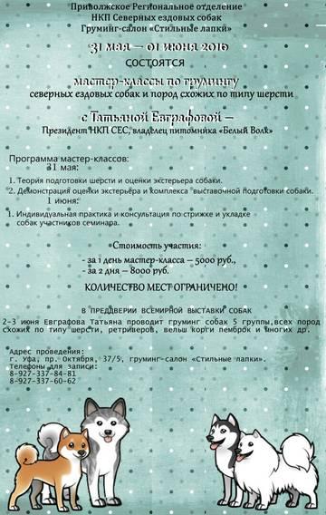 http://sd.uploads.ru/t/rtlV1.jpg
