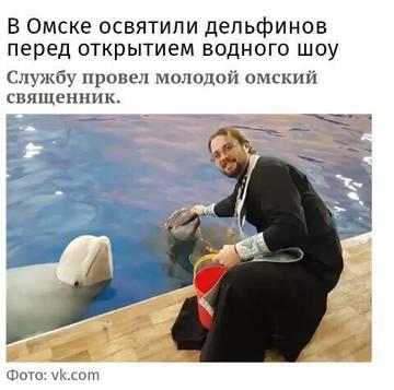 http://sd.uploads.ru/t/ruzRa.jpg