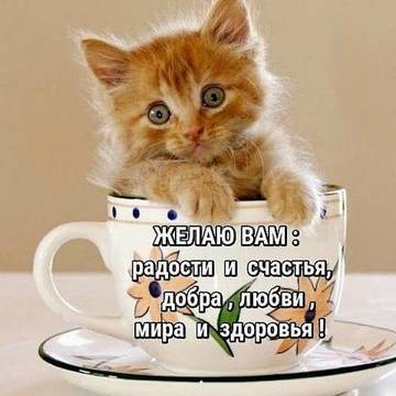http://sd.uploads.ru/t/sbU2c.jpg