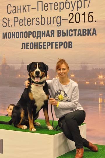 http://sd.uploads.ru/t/tOTEe.jpg
