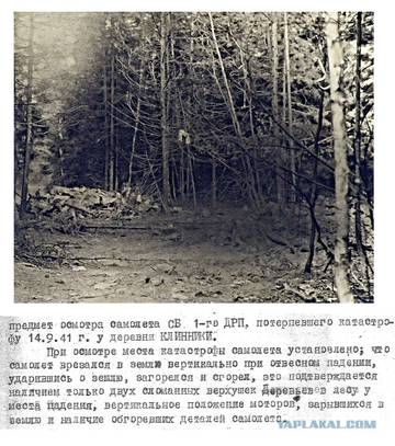 http://sd.uploads.ru/t/tdLNZ.jpg
