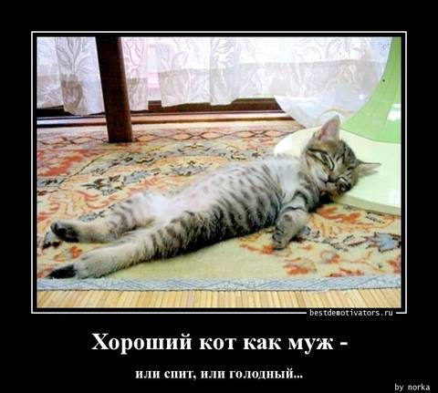 http://sd.uploads.ru/t/uNqf0.jpg