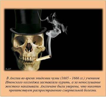 http://sd.uploads.ru/t/urgsR.jpg