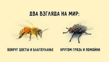 http://sd.uploads.ru/t/urtpG.jpg