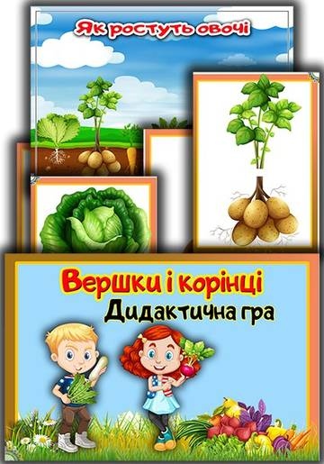 http://sd.uploads.ru/t/vEsj6.jpg