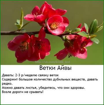 http://sd.uploads.ru/t/wBklm.jpg