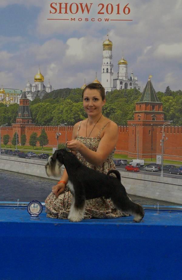 http://sd.uploads.ru/t/wN2v3.jpg