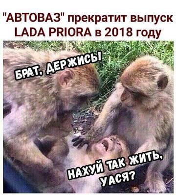 http://sd.uploads.ru/t/wbPDf.jpg