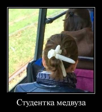 http://sd.uploads.ru/t/wj80G.jpg