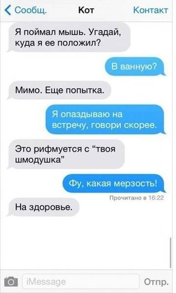 http://sd.uploads.ru/t/xjmPy.jpg