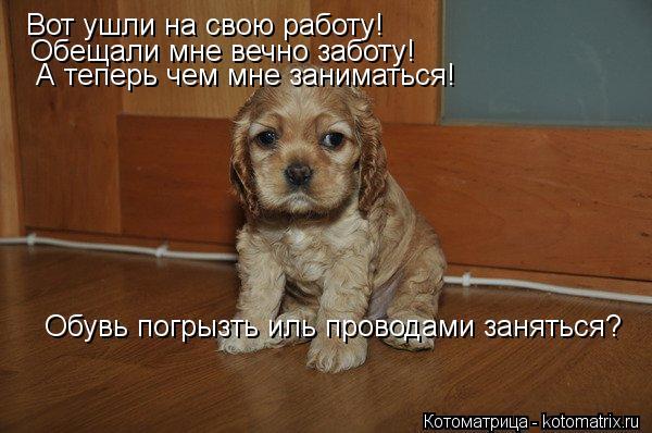 http://sd.uploads.ru/t/ydfzu.jpg