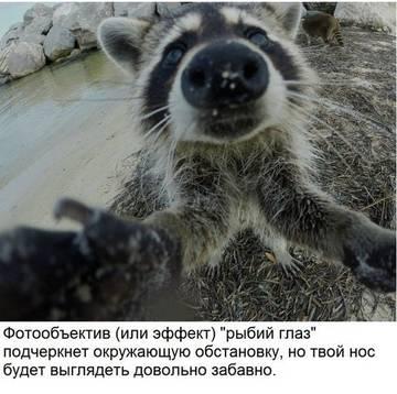 http://sd.uploads.ru/t/yfhZX.jpg