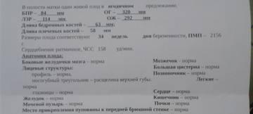 http://sd.uploads.ru/t/z07Jf.jpg