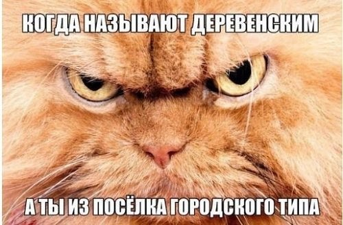 http://sd.uploads.ru/t/zbyQq.jpg