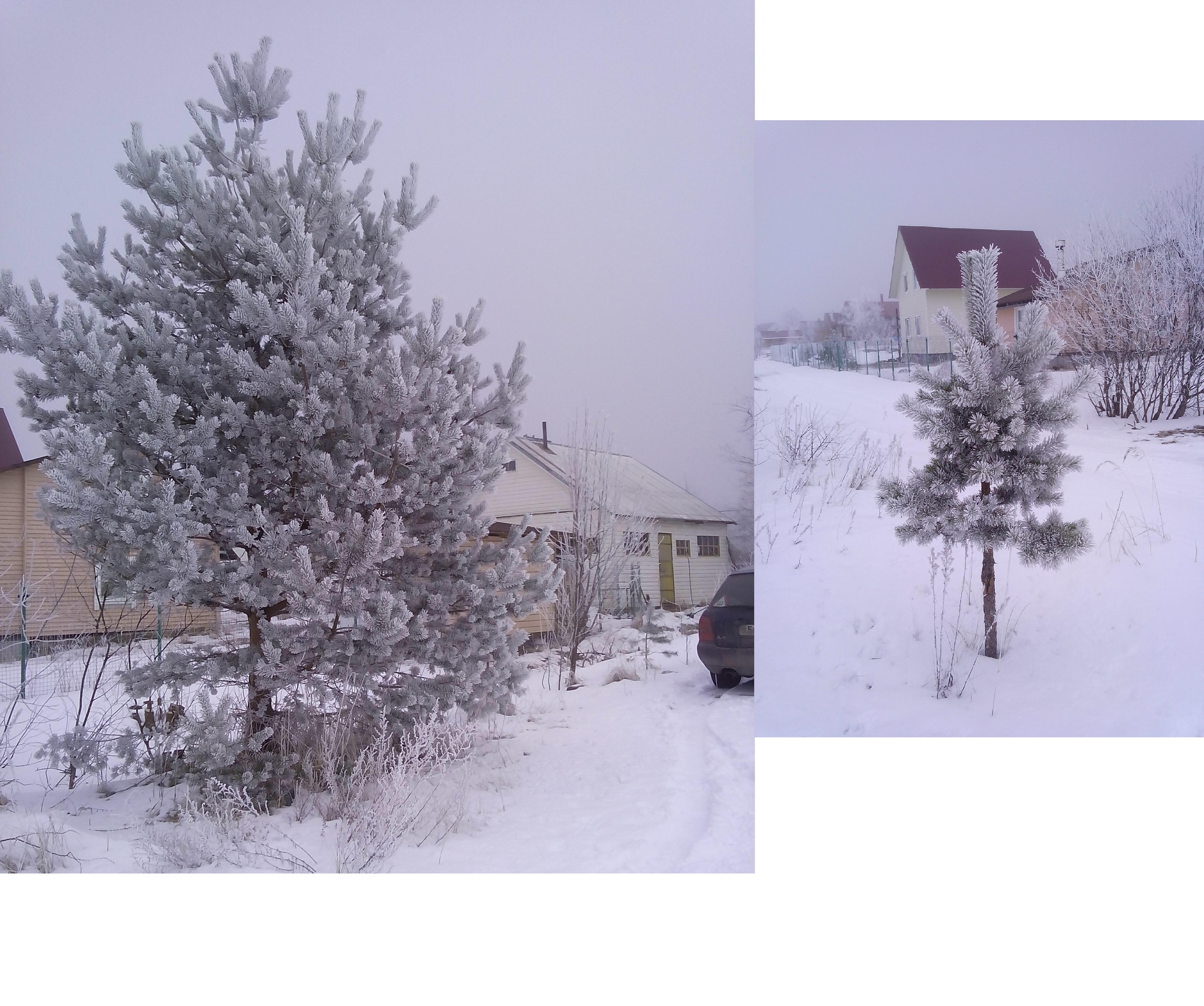 http://sd.uploads.ru/tGyJK.jpg