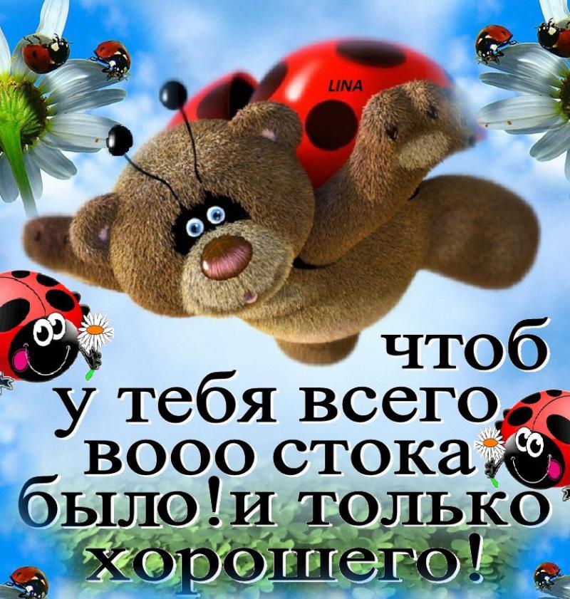 http://sd.uploads.ru/tRubD.jpg