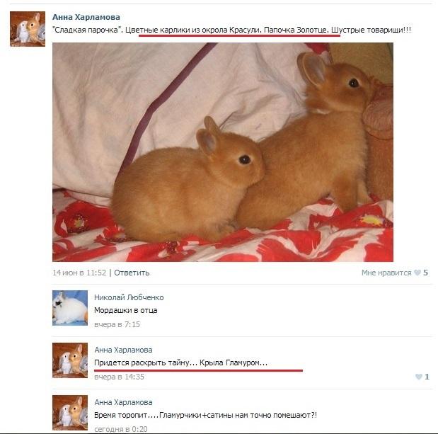 http://sd.uploads.ru/v5MqG.jpg