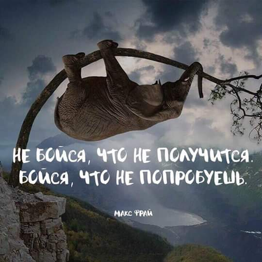 http://sd.uploads.ru/wft8x.jpg