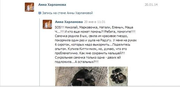 http://sd.uploads.ru/xERQq.jpg