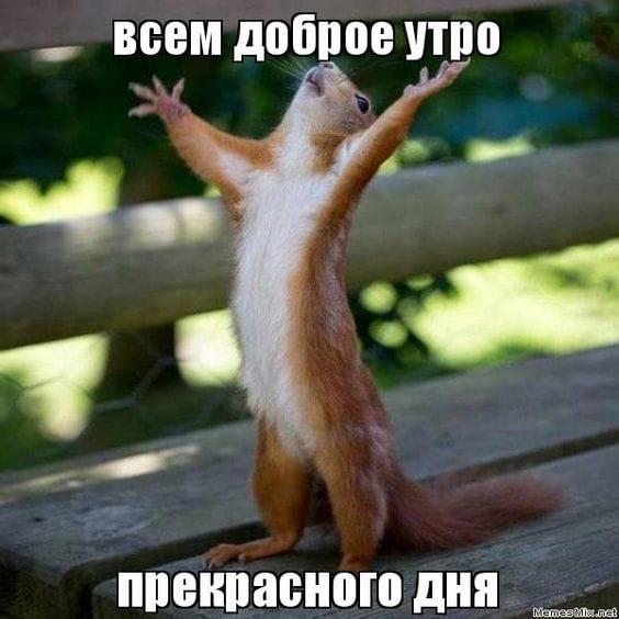 http://sd.uploads.ru/yHuZR.jpg