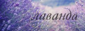 http://sd.uploads.ru/yPWlk.jpg
