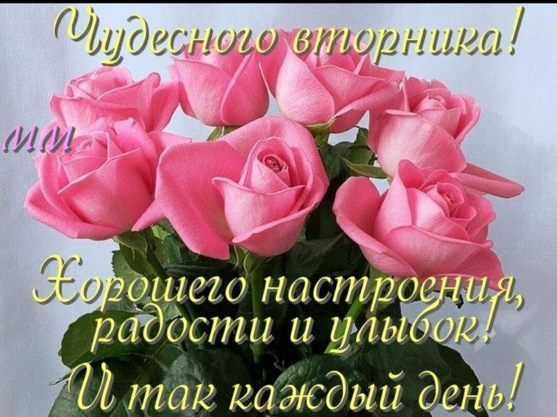 http://sd.uploads.ru/zApV9.jpg