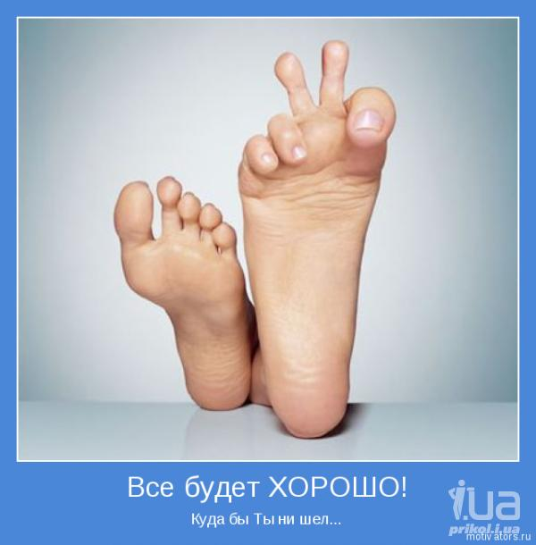 http://sd.uploads.ru/zEcyA.jpg