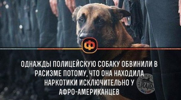 http://sd.uploads.ru/8B1hS.jpg