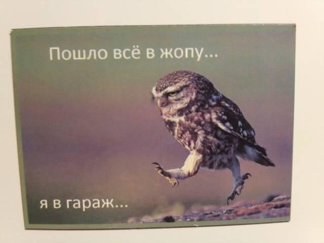http://sd.uploads.ru/Gm9EX.jpg