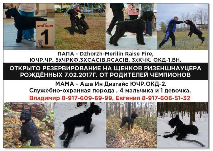 http://sd.uploads.ru/Or8J5.jpg
