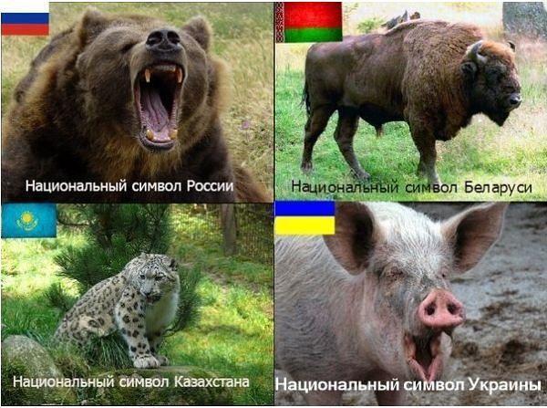 http://sd.uploads.ru/QscRe.jpg