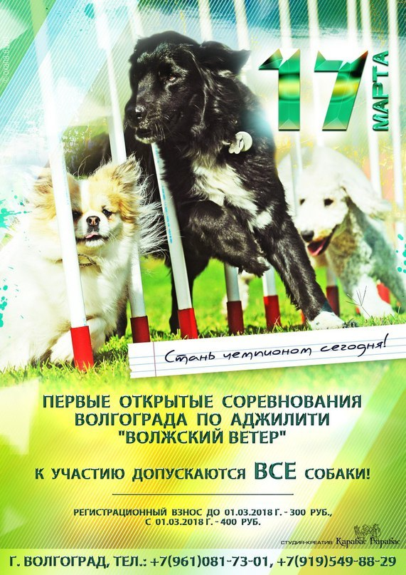 http://sd.uploads.ru/VZzfi.jpg
