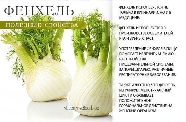 http://sd.uploads.ru/Yi5nO.jpg