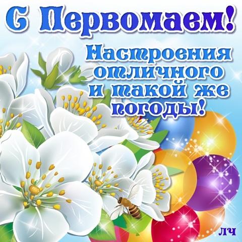 http://sd.uploads.ru/fHEZJ.jpg