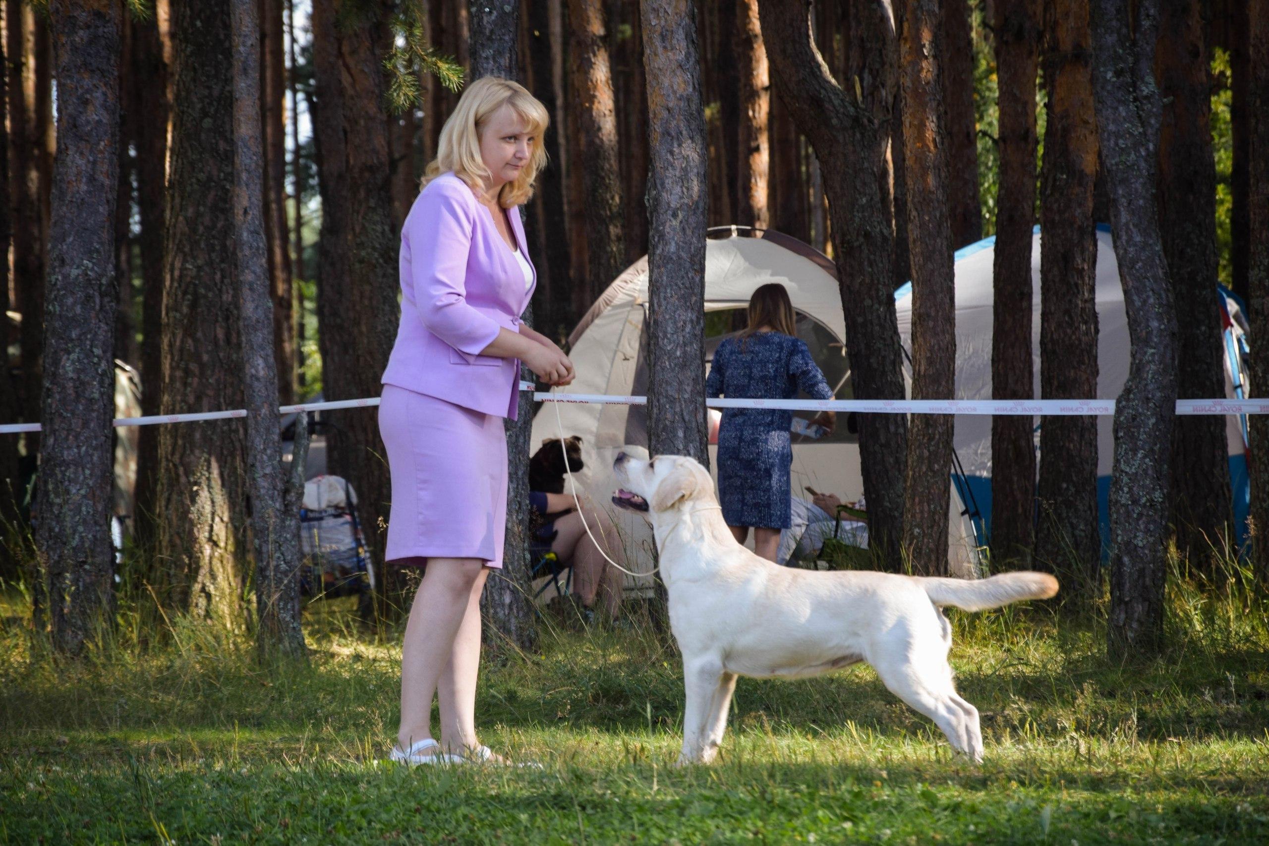 http://sd.uploads.ru/gmjhU.jpg