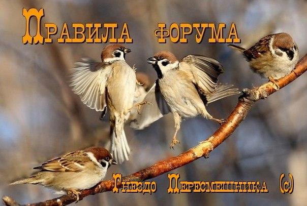 http://sd.uploads.ru/ipgEc.jpg