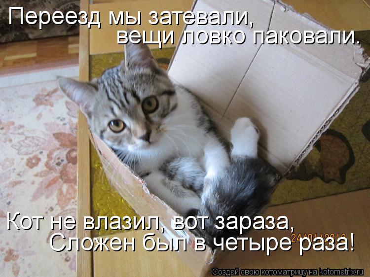 http://sd.uploads.ru/jBKVx.jpg