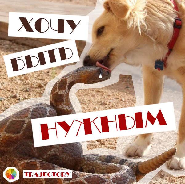 http://sd.uploads.ru/kzVDK.jpg