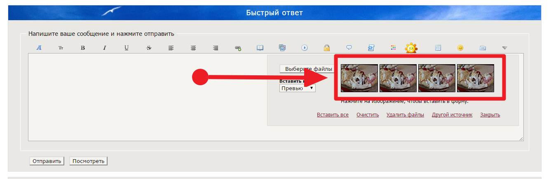 http://sd.uploads.ru/mAa0f.png