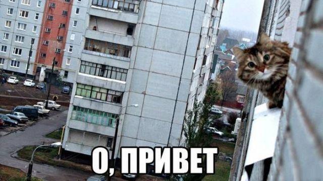 http://sd.uploads.ru/no5gk.jpg