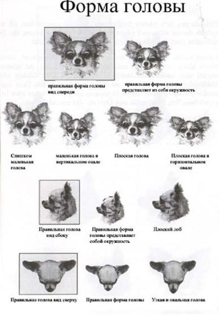 http://sd.uploads.ru/ofLSC.jpg