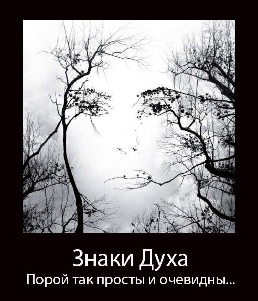 http://sd.uploads.ru/ptY2W.jpg