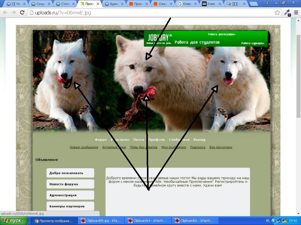 http://sd.uploads.ru/qvFMd.jpg