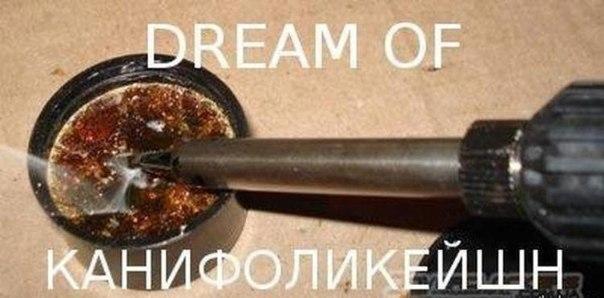 http://sd.uploads.ru/sOu0r.jpg