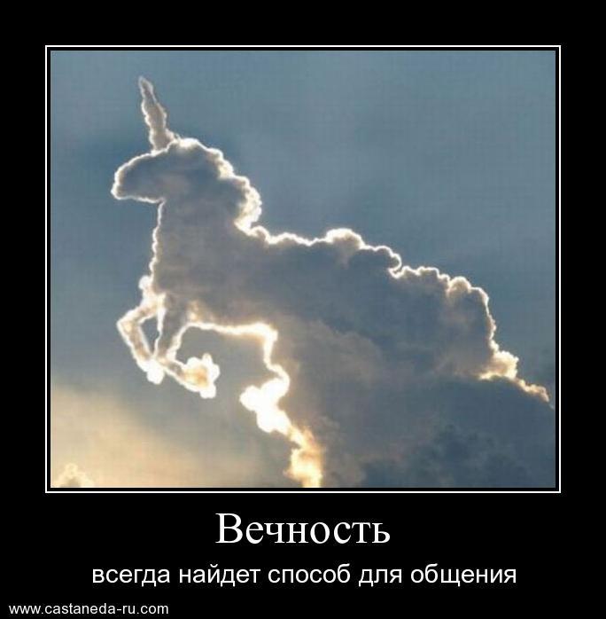 http://sd.uploads.ru/sjIdc.jpg