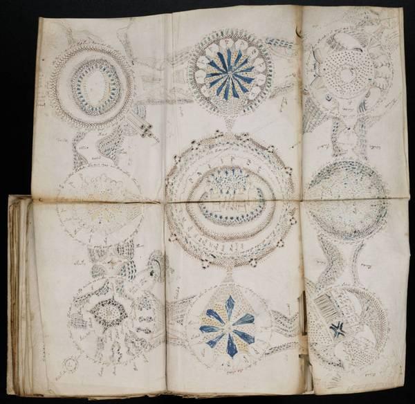 Voynich Manuscript, Манускрипт Войнича