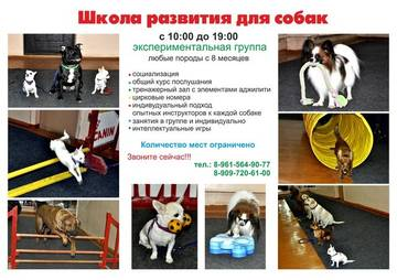 http://sd.uploads.ru/t/0PD8B.jpg