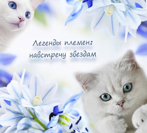 http://sd.uploads.ru/t/2adxZ.png
