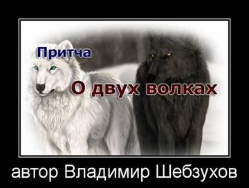 http://sd.uploads.ru/t/3c5FD.jpg