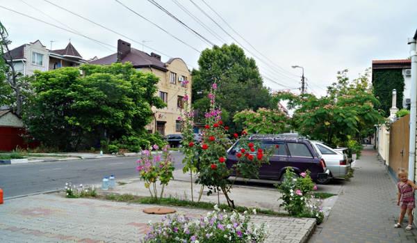 http://sd.uploads.ru/t/AldfJ.jpg